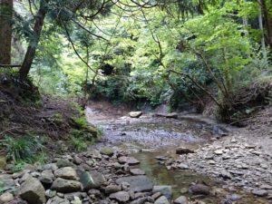 養老渓谷4